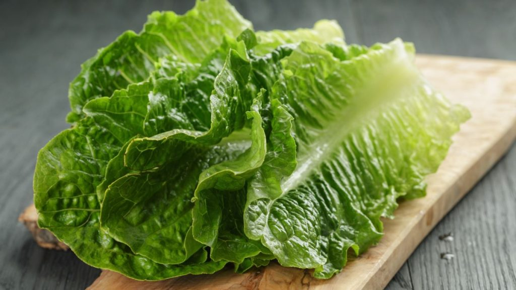 Its Time for the Annual Romaine Recall